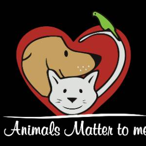 Animals Matter To Me, Mumbai