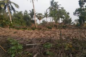 AMPHAN CYCLONE EMERGENCY APPEAL