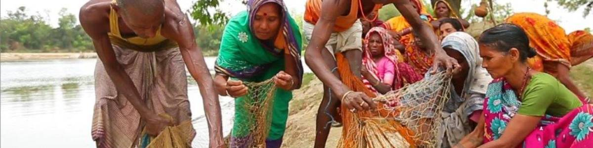 COVID19 – NUTRITION AND RELEVANT LIVELIHOODS RURAL ELDERLY COLLECTIVES