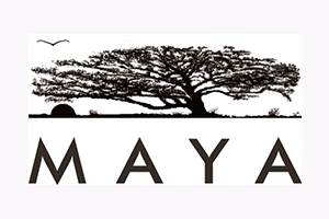 Movement for Alternatives and Youth Awareness (MAYA)