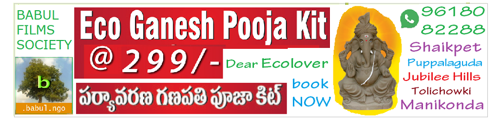 Eco-friendly Eco Ganesh Pooja kit