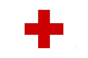 Indian Red Cross Society, Tamil Nadu Branch