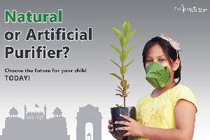Funding for Green India