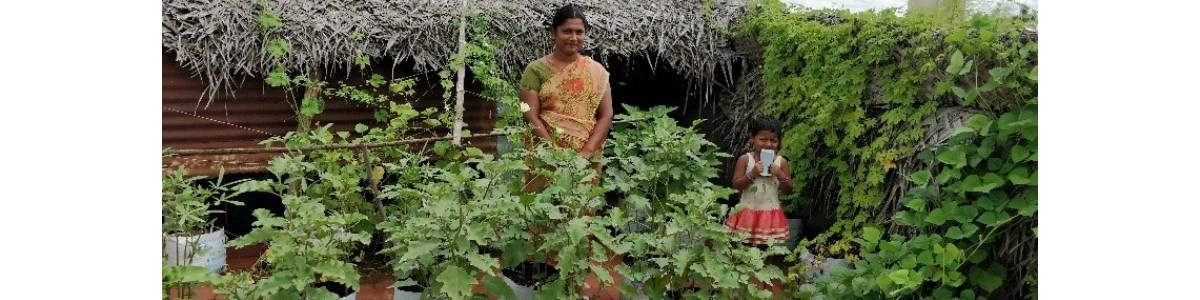 Integrated Farm for Food and Income