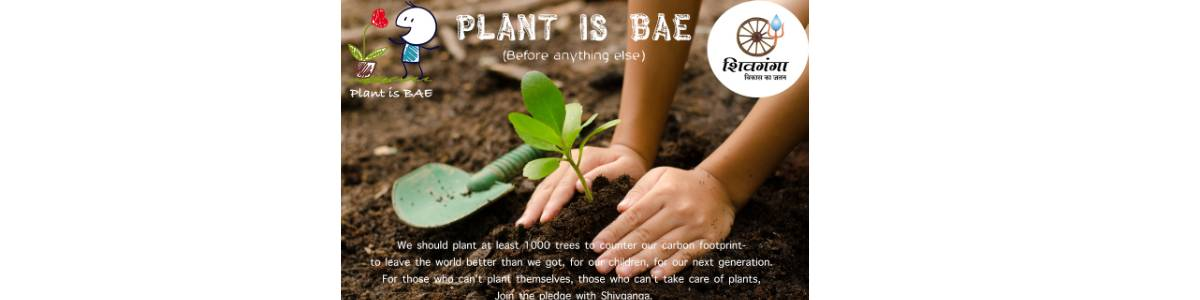 Plant is bae!