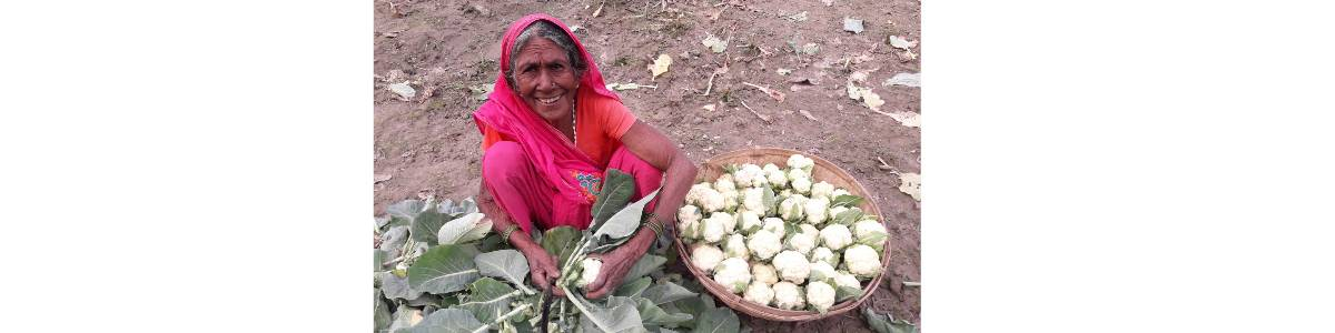 Income Generation Through Vegetable Farming