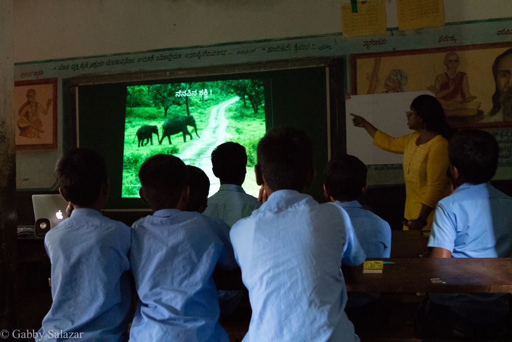 Wild Shaale - Transforming Conservation Education for Children Living Around India's Parks