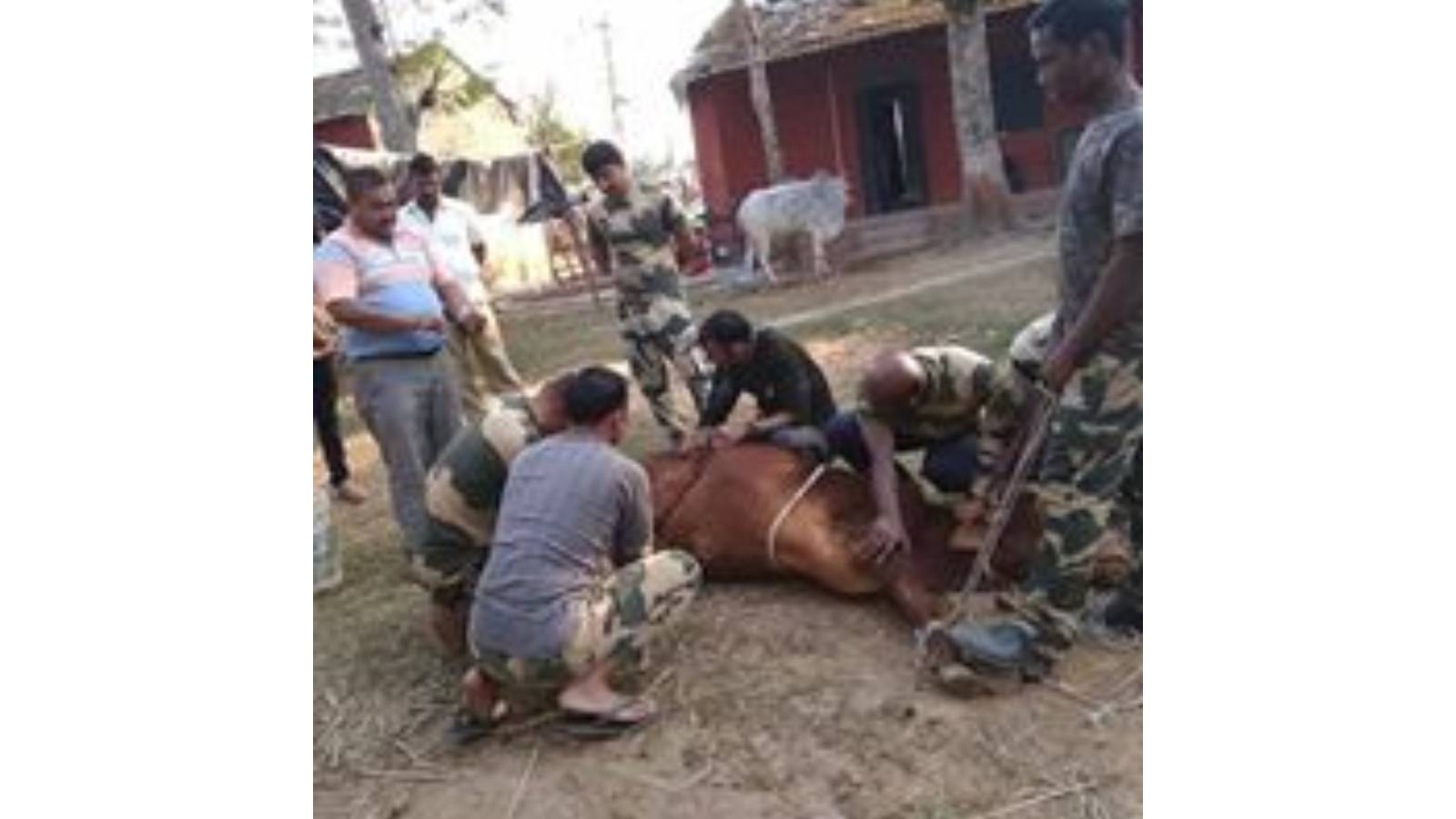 rescue with the help of BSF