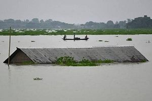 ASSAM & BIHAR FLOOD RELIEF