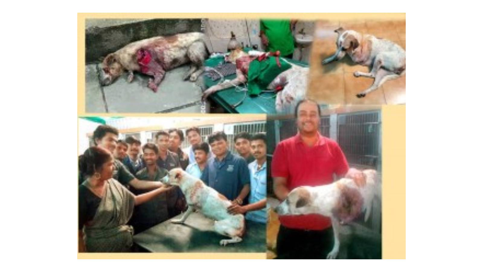 Rescue of Rani till recovery